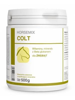 DOLFOS, Preparat witaminowy dla źrebiąt HORSEMIX COLT, 500g 24h
