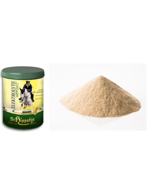ST HIPPOLYT, ELEKTROLITY, 1 kg 24h