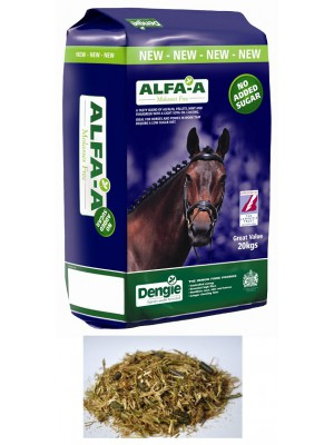 DENGIE Alfa A Molasses Free 20 kg 24h