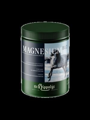 ST HIPPOLYT, MAGNESIUM B12, 1kg 24h