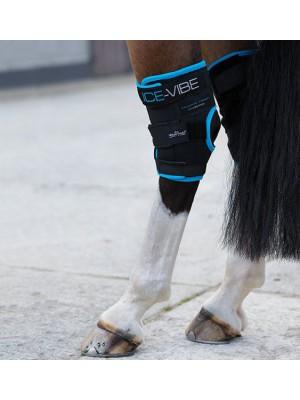 HORSEWARE, Ochraniacze chłodząco-wibrujące na staw skokowy ICE-VIBE