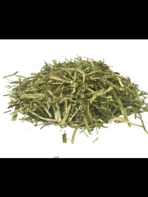 ALFALFA Gastro- Sieczka z lucerny z dodatkiem oleju kukurydzianego 22kg 24h