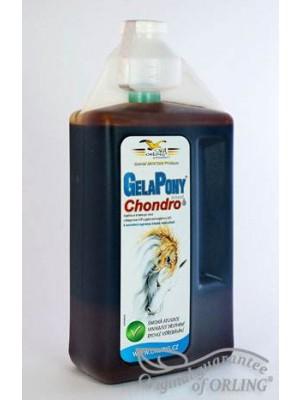 GelaPony Chondro BIOSOL 3l - ORLING