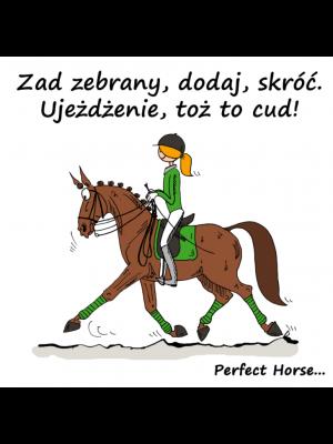 PERFECT HORSE, Naklejka samochodowa UJEŻDŻENIE 24h