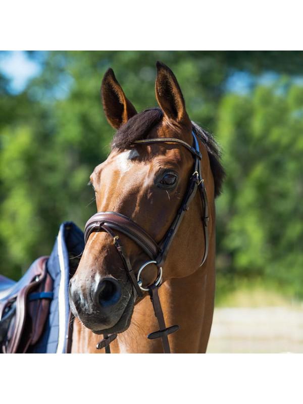 Horze Ogłowie Cresendo Lester Sklep Jeździecki Dobry Koń
